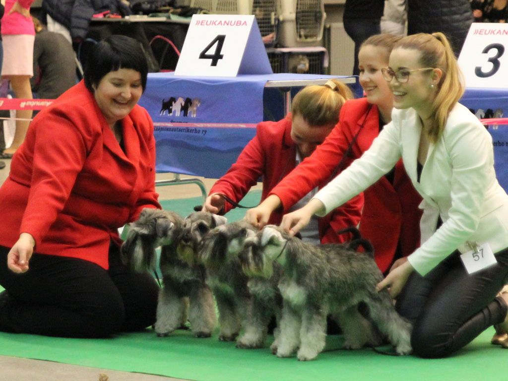 Imbrez Breeder Group at the Japanese Show