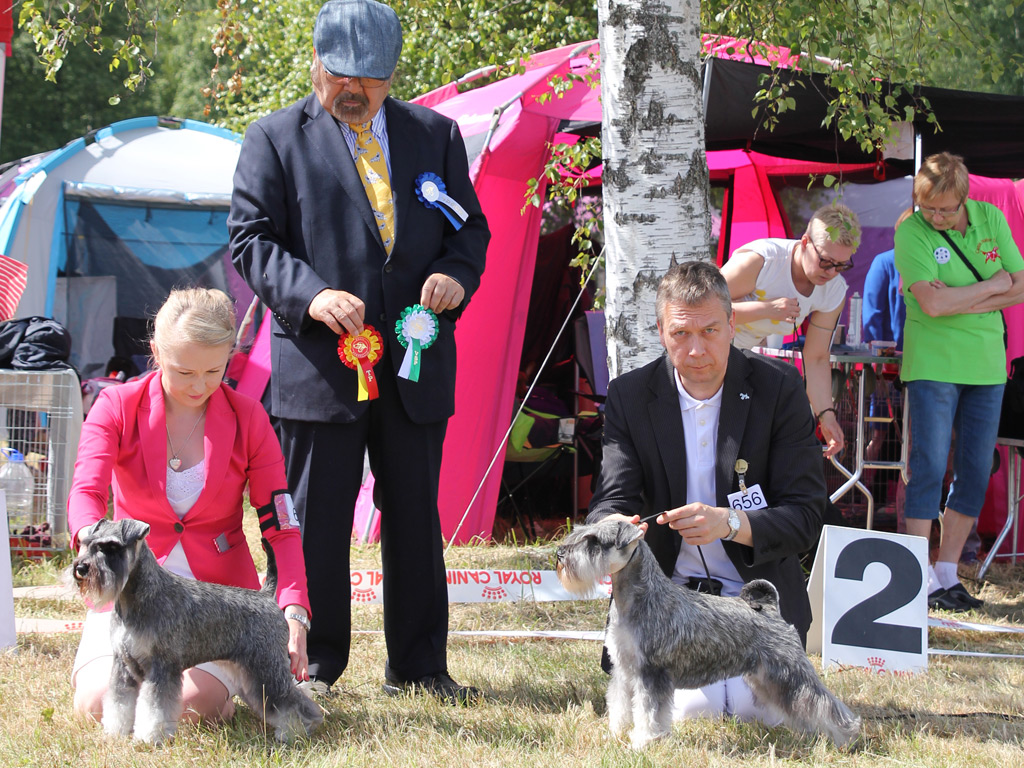 Imbrez Green Light District BOS and first CACIB from Pärnu on Saturday